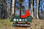 Let' go walking!.JPG